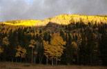 ohranger new york state parks app